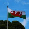 New Welsh Application Route for DBS